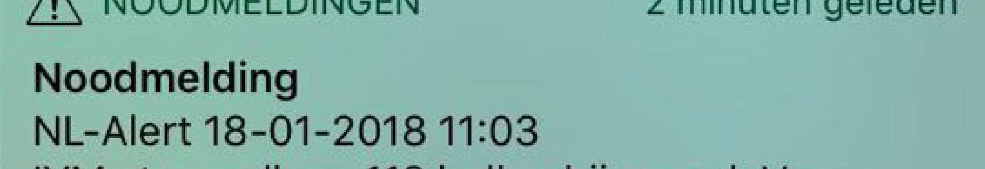 25855.jpg